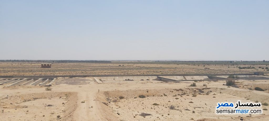 Ad Photo: Farm 750 acre in Wadi Al Natrun  Buhayrah