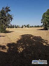 Ad Photo: Farm 10 acre in Husseiniya  Sharqia