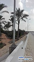 Ad Photo: Land 5 acre in Bilbeis  Sharqia