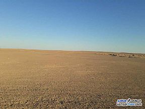 Ad Photo: Land 250 sqm in Shibin El Kom  Minufiyah