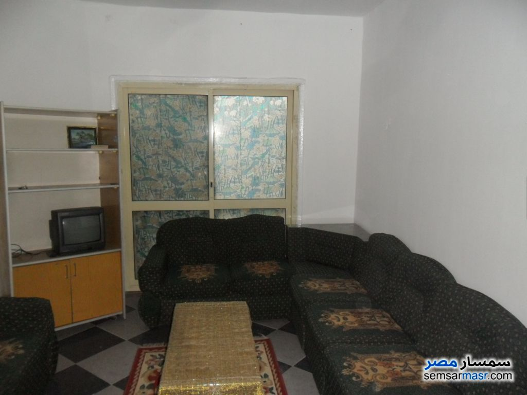 Photo 1 - Apartment 1 bedroom 1 bath 45 sqm lux For Rent Dokki Giza