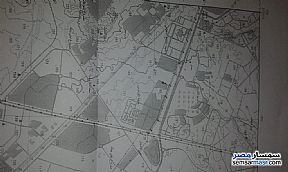 Ad Photo: Land 10000 sqm in Dreamland  6th of October