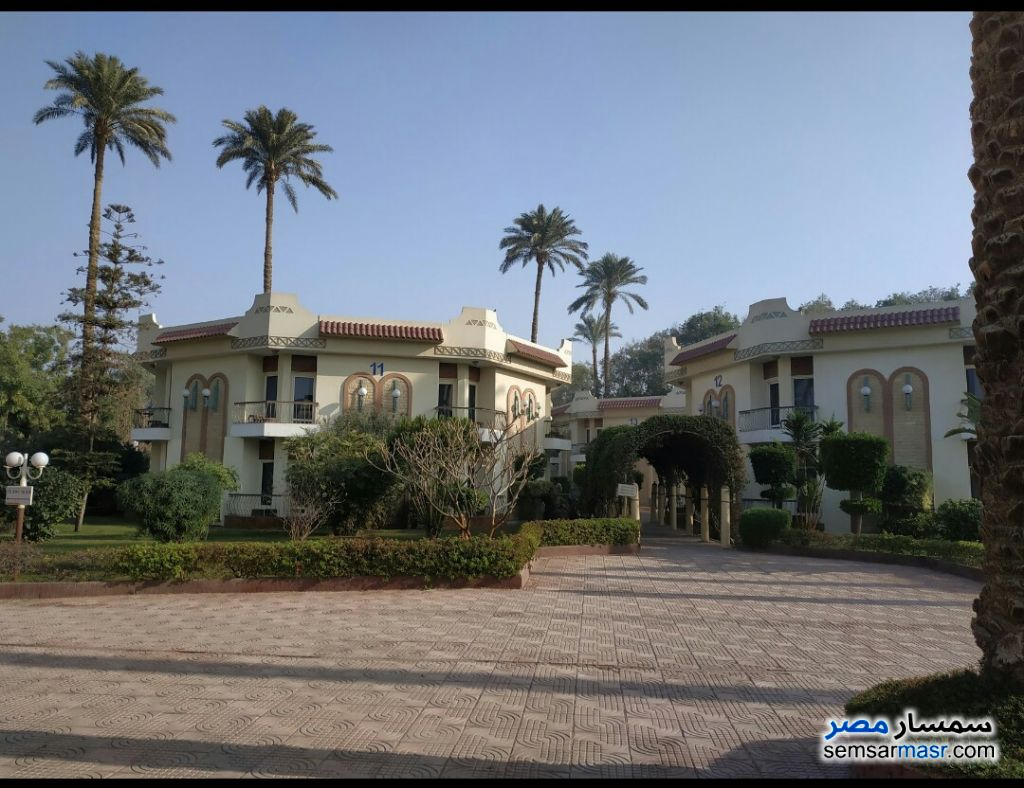 Photo 1 - Land 10,000 sqm For Sale Haram Giza