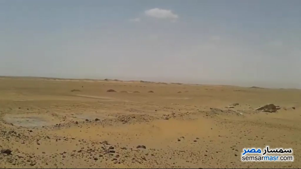 Ad Photo: Farm 200 acre in Dakhla  New Valley