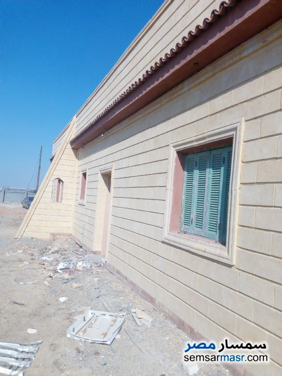 Ad Photo: Farm 6 acre in Wadi Al Natrun  Buhayrah