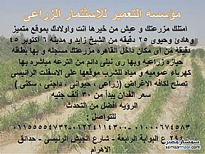 Ad Photo: Farm 10 acre in New Fayoum  Fayyum