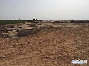 Ad Photo: Farm 10 acre in El Ubour City  Qalyubiyah