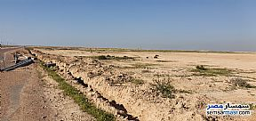 Ad Photo: Land 500 acre in Borg Al Arab  Alexandira