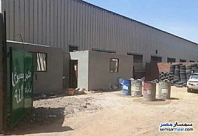Land 650 sqm For Rent Mostorod Qalyubiyah - 5