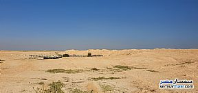 Ad Photo: Land 20 acre in Borg Al Arab  Alexandira