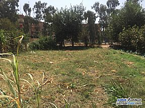 Land 100 sqm For Sale Banha Qalyubiyah - 2