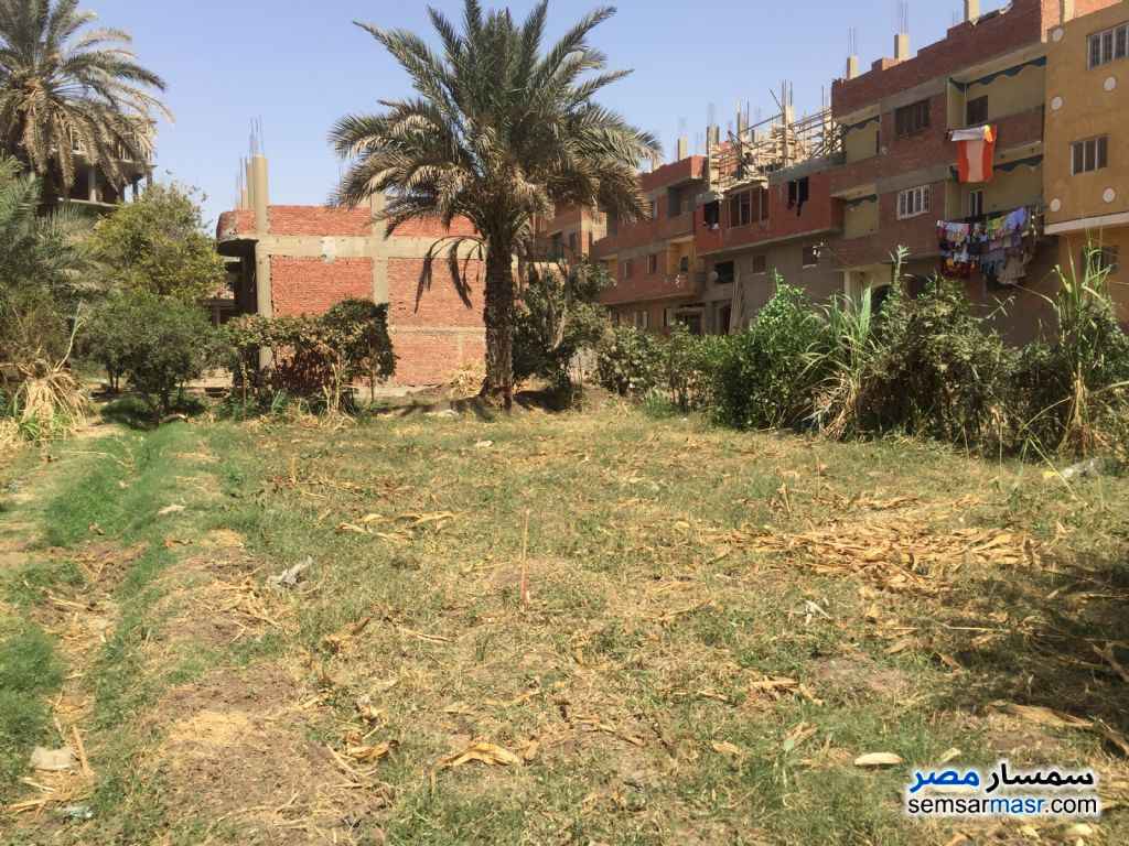 Photo 3 - Land 100 sqm For Sale Banha Qalyubiyah