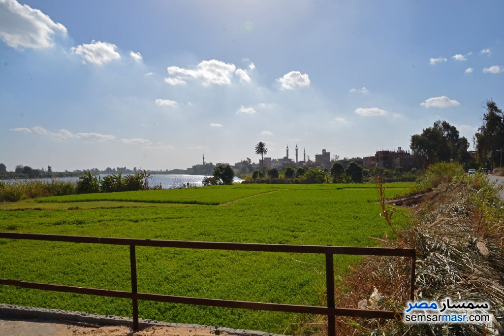 Photo 1 - Farm 3,084 sqm For Sale Shirbin Daqahliyah