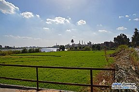 Farm 3,084 sqm For Sale Shirbin Daqahliyah - 1