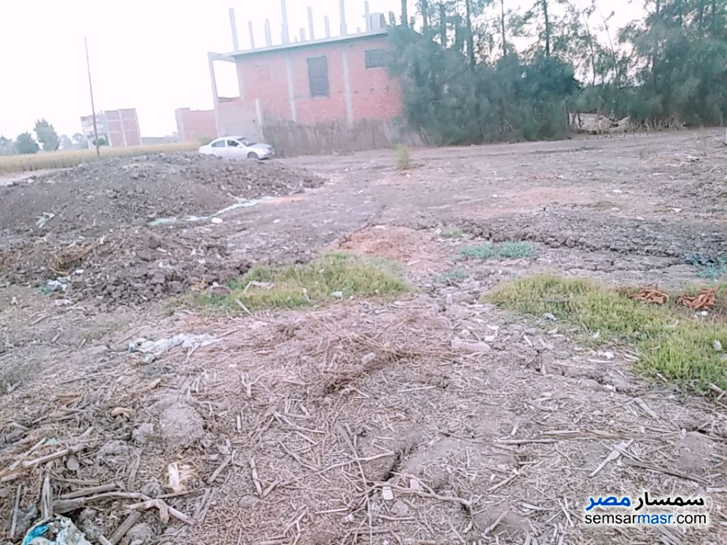 Ad Photo: Farm 187 sqm in Sharqia
