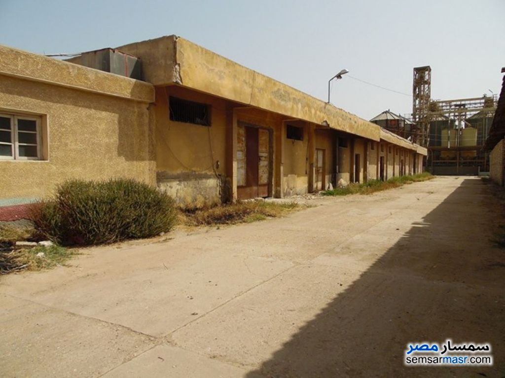 Photo 7 - Commercial 66 sqm For Rent Damanhour Buhayrah