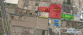 Land 20 acre For Sale Amereyah Alexandira - 1