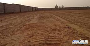 Ad Photo: Land 2500 sqm in Awayed  Alexandira