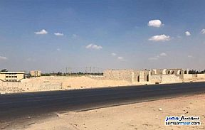 Ad Photo: Land 2500 sqm in Wadi Al Natrun  Buhayrah