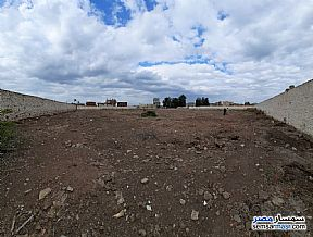Ad Photo: Land 16100 sqm in Abu Kabir  Sharqia