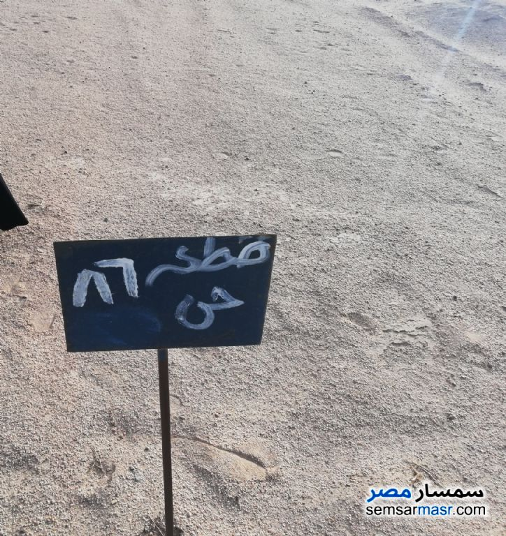 Photo 2 - Land 150 sqm For Sale Hurghada Red Sea