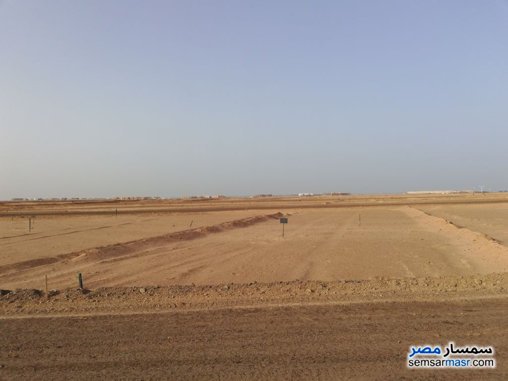 Photo 3 - Land 150 sqm For Sale Hurghada Red Sea