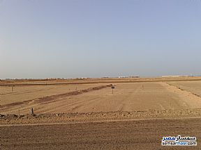 Land 150 sqm For Sale Hurghada Red Sea - 3