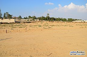 Ad Photo: Land 150 sqm in Ismailia City  Ismailia