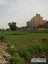 Ad Photo: Land 5200 sqm in Tanta  Gharbiyah