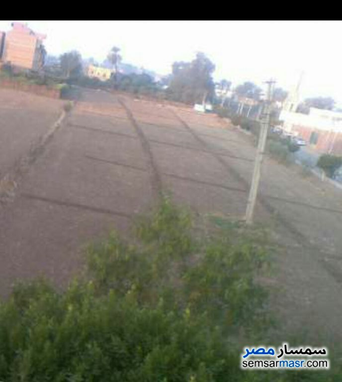 Photo 1 - 3000 sqm For Sale Quesna Minufiyah