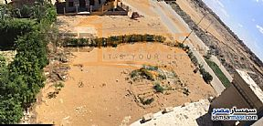 Ad Photo: Land 290 sqm in October Gardens  6th of October