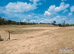 Ad Photo: Land 4000 sqm in Moharam Bik  Alexandira