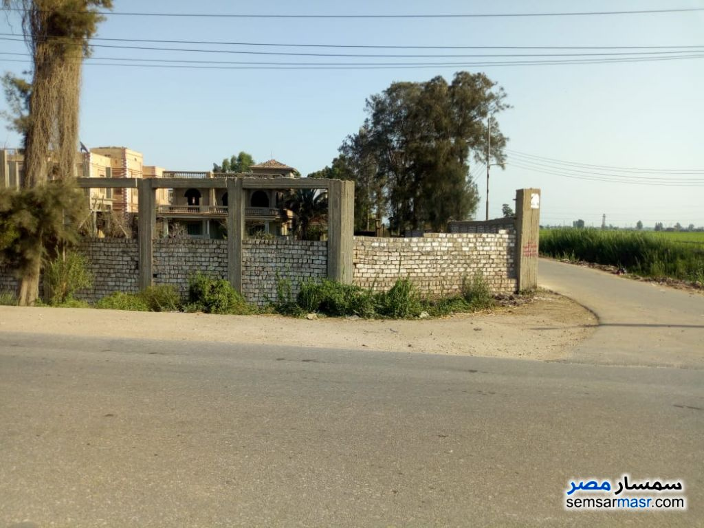 Photo 1 - Land 1,000 sqm For Sale Mansura Daqahliyah