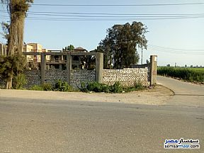 Ad Photo: Land 1000 sqm in Mansura  Daqahliyah