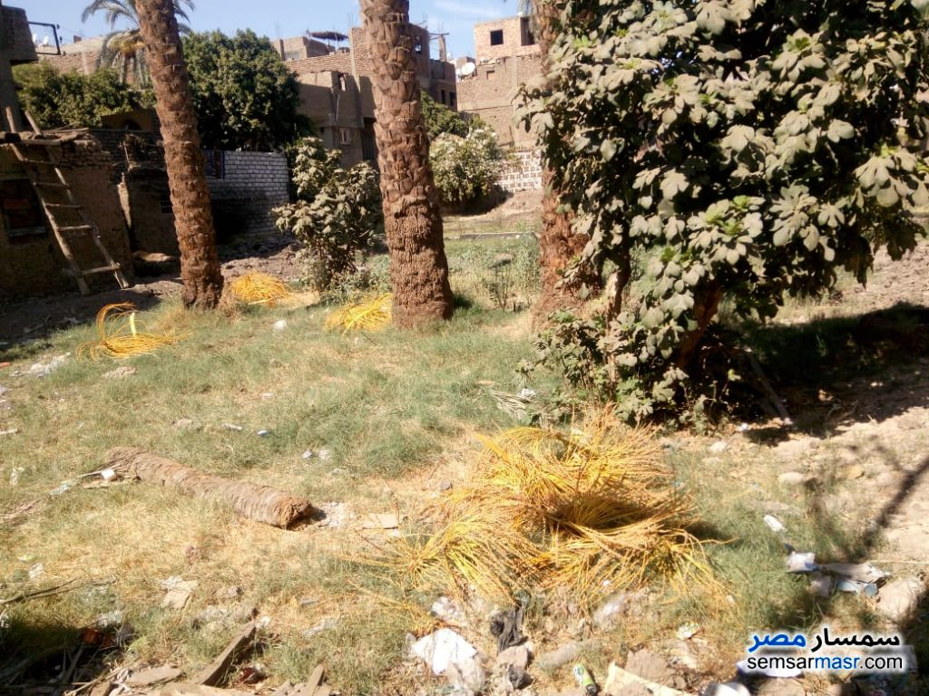 Photo 1 - Land 107 sqm For Sale Luxor City Luxor