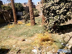 Land 107 sqm For Sale Luxor City Luxor - 1