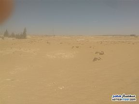 Ad Photo: Land 600 sqm in Bahariya Oasis  Giza