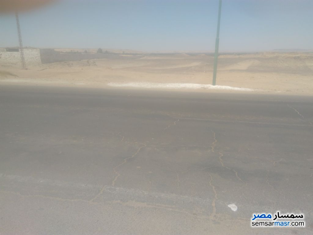 Photo 2 - Land 3,080 sqm For Sale Bahariya Oasis Giza