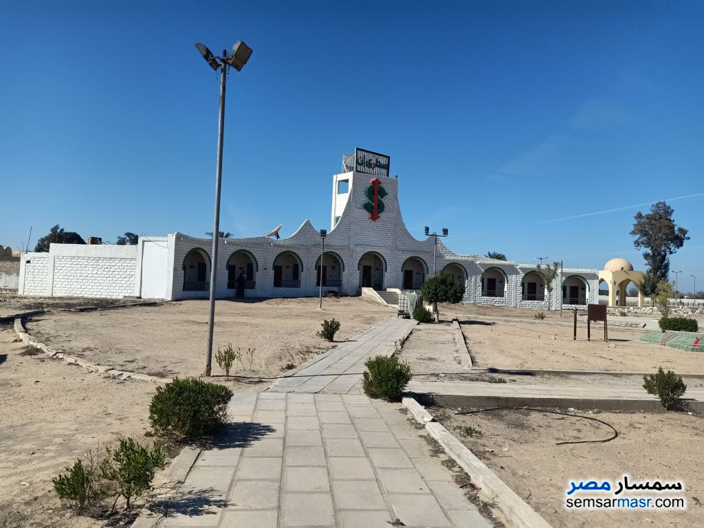 Photo 3 - Land 28,000 sqm For Sale Wadi Al Natrun Buhayrah