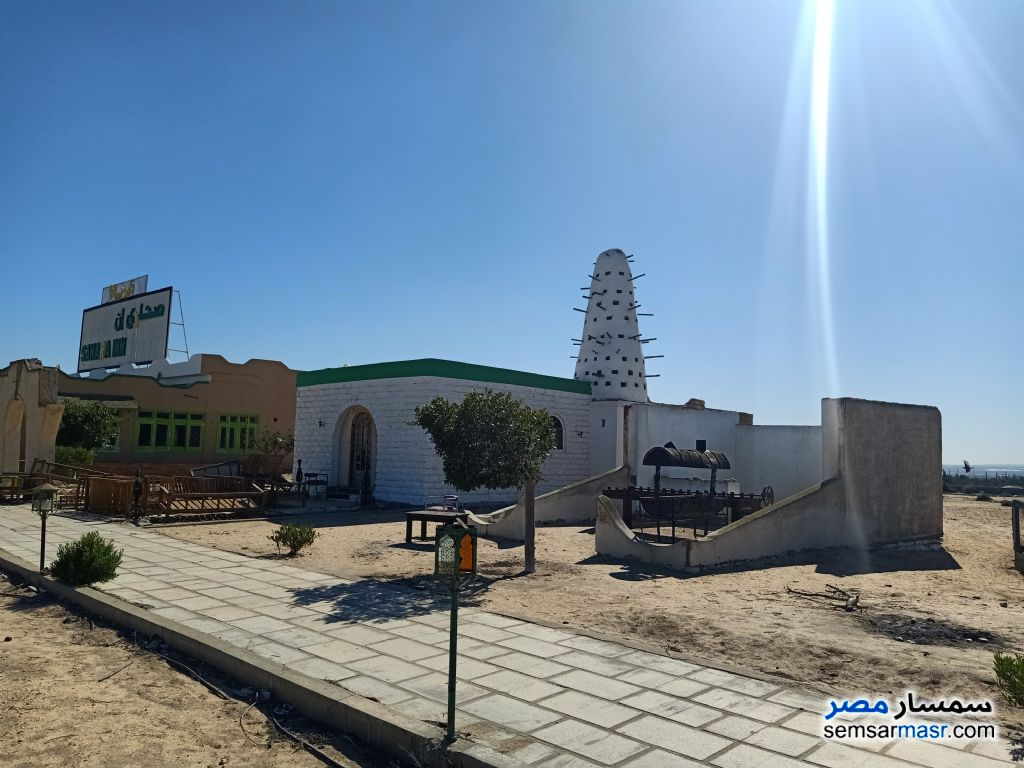 Photo 4 - Land 28,000 sqm For Sale Wadi Al Natrun Buhayrah