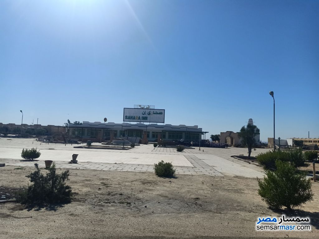 Photo 5 - Land 28,000 sqm For Sale Wadi Al Natrun Buhayrah