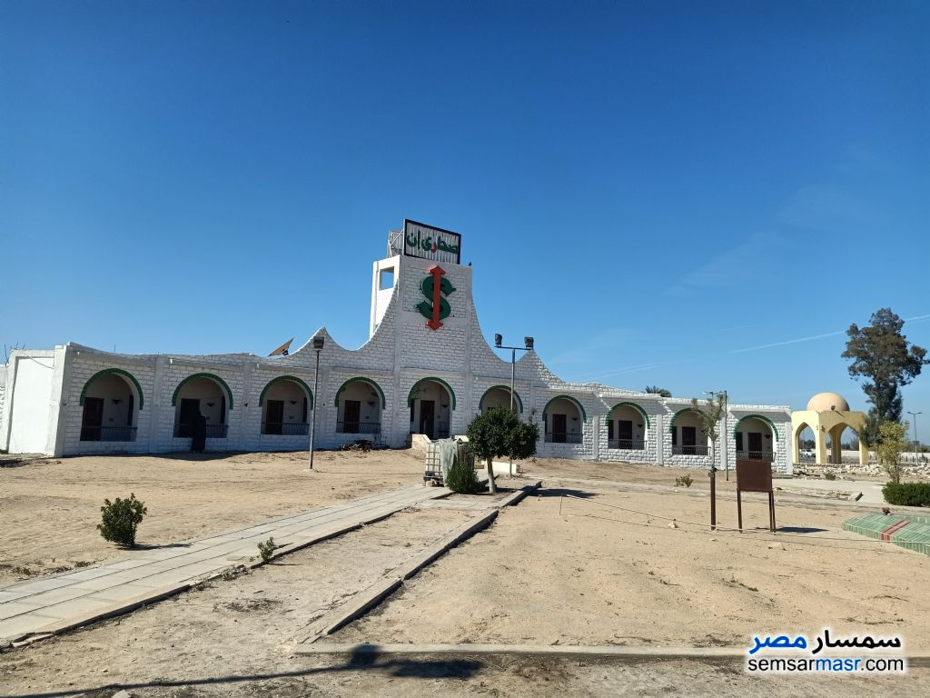 Photo 6 - Land 28,000 sqm For Sale Wadi Al Natrun Buhayrah