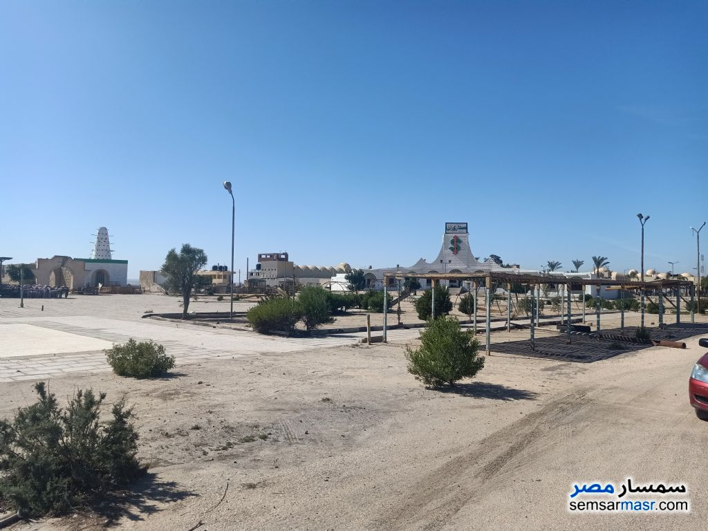 Photo 7 - Land 28,000 sqm For Sale Wadi Al Natrun Buhayrah