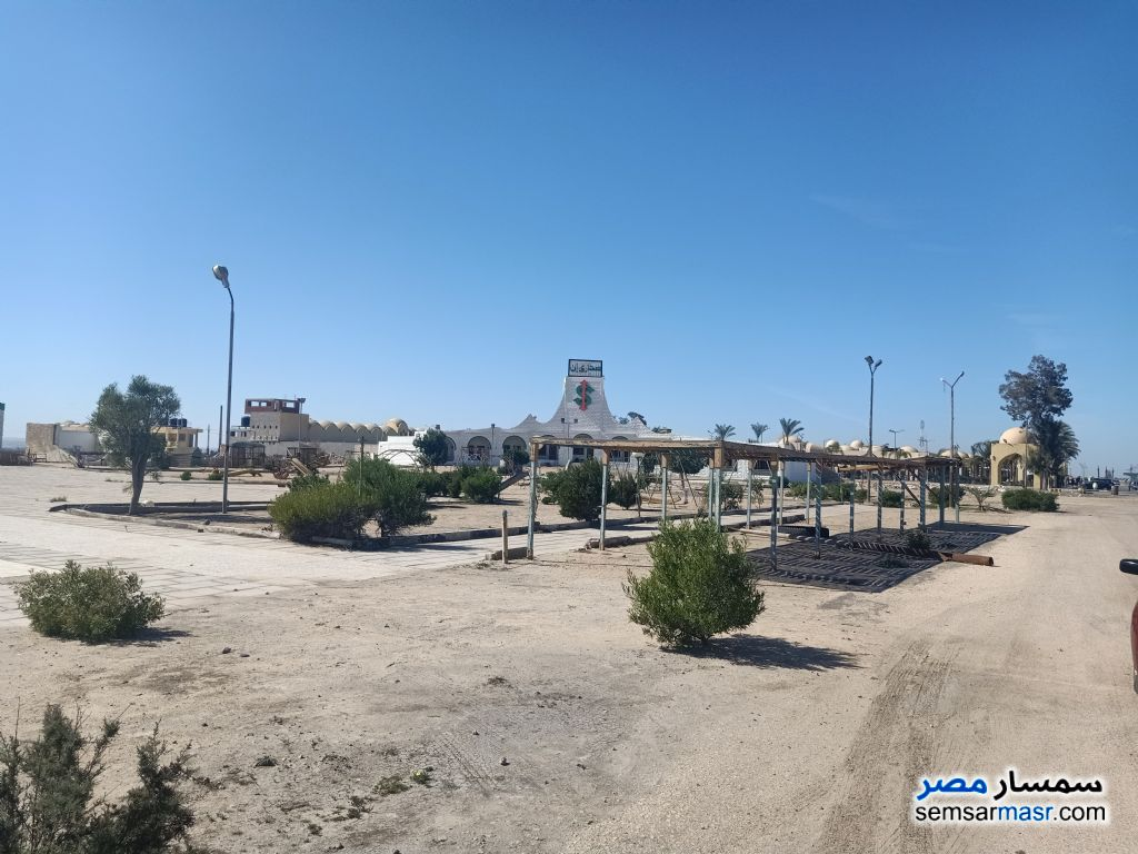 Photo 8 - Land 28,000 sqm For Sale Wadi Al Natrun Buhayrah