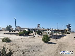 Land 28,000 sqm For Sale Wadi Al Natrun Buhayrah - 8