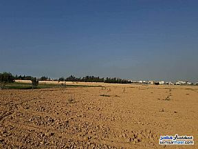 Ad Photo: Land 1500 sqm in King Maryot  Alexandira