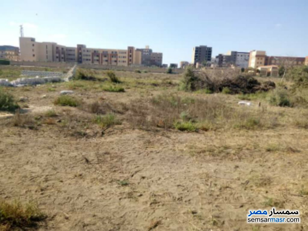 Photo 1 - Land 142 sqm For Sale Moharam Bik Alexandira