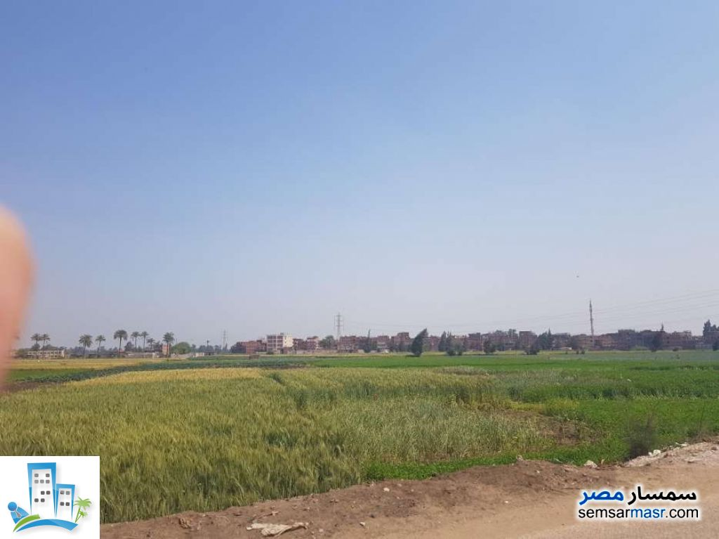 Ad Photo: Farm 5 acre in Minya Al Qamh  Sharqia