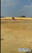 Ad Photo: Land 5000 sqm in Amereyah  Alexandira