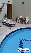 Ad Photo: Apartment 1 bedroom 1 bath 43 sqm extra super lux in Red Sea